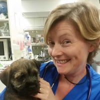 Animal Emergency Service Pet ICU Nursing Manager, Jane Roberts with dog