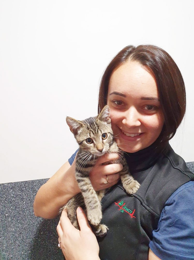 Underwood Practice Manager Demelza Booth with kitten