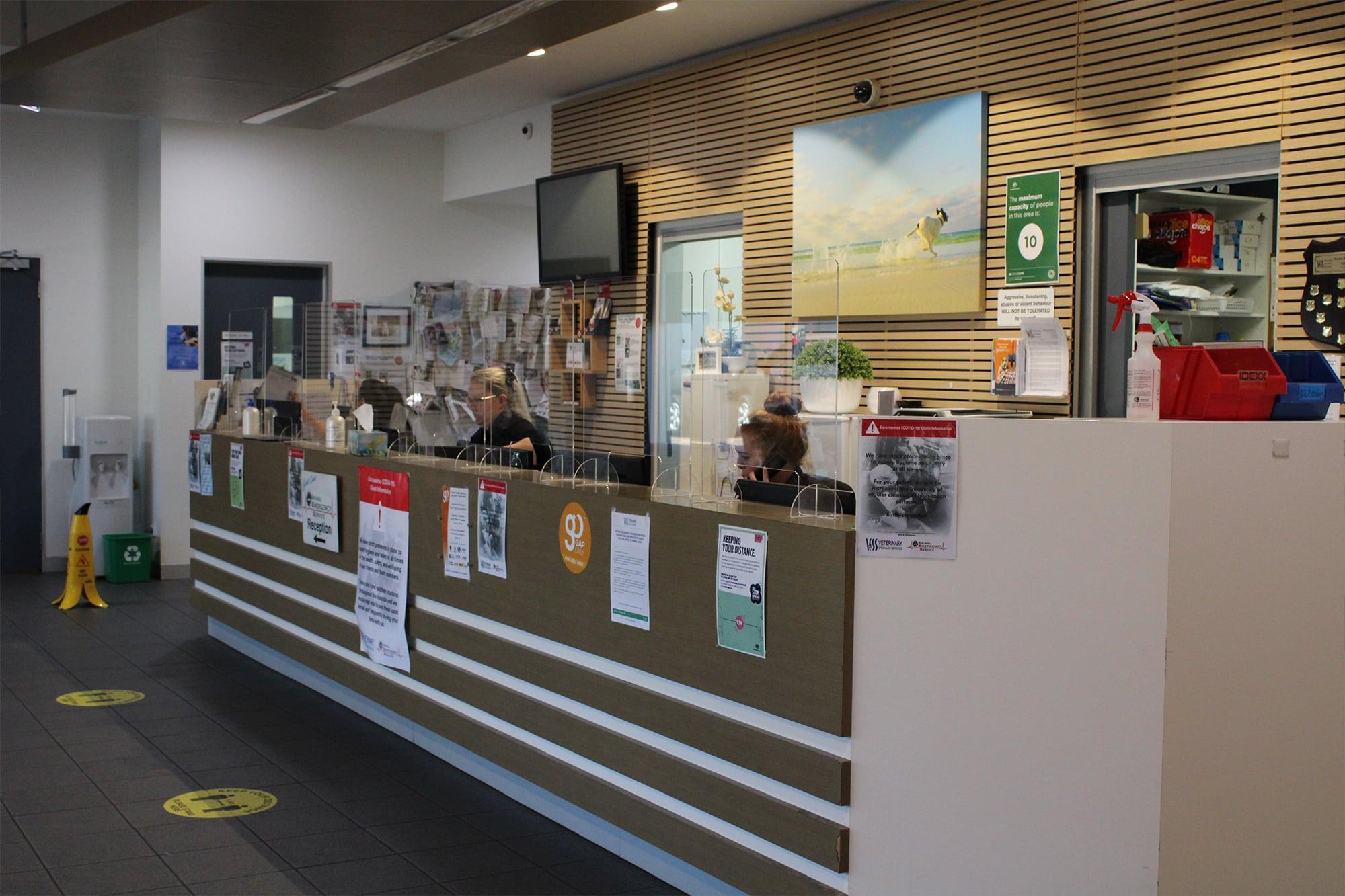 Reception area at Animal Emergency Service Carrara