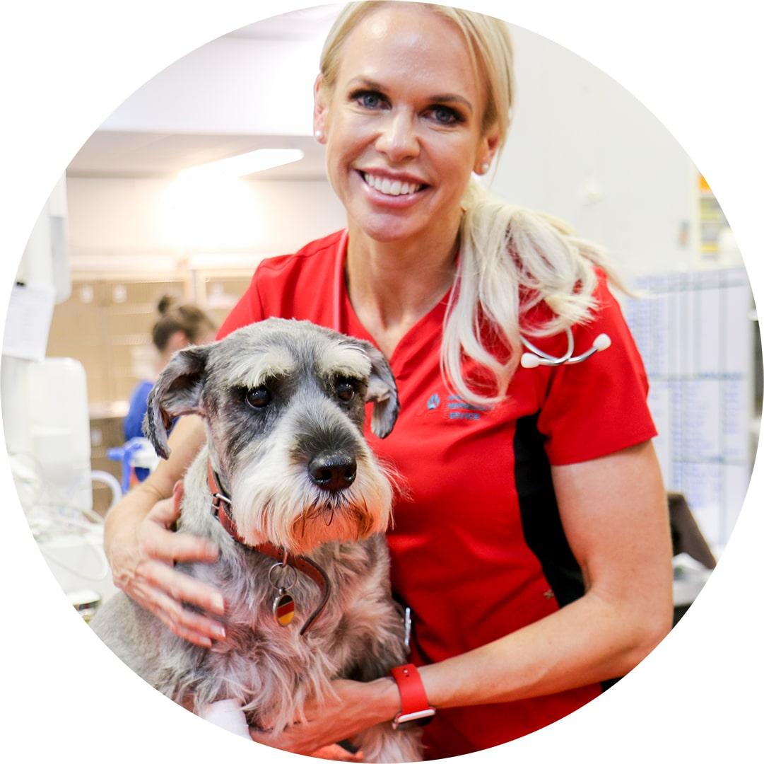Animal Emergency Service and Bondi Vet Dr Alex Hynes with dog